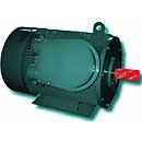Электродвигатель асинхронный взрывозащищенный низковольтный 1ВАО-280Y-0,38-6У2