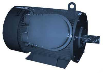 Электродвигатель асинхронный взрывозащищенный низковольтный 1ВАО-315M-0,66-2У2
